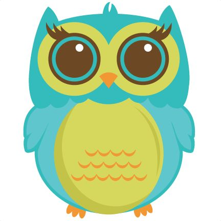 Cute owl illustration